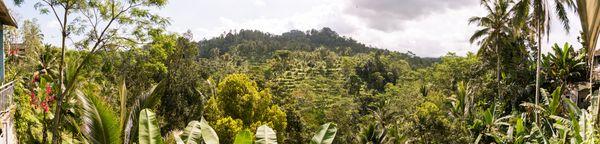 Misteri Gunung Kawi: Mulai dari Meminta Kehamilan dan Pesugihan